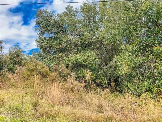 355 North Road, Wauchula, FL 33873 (MLS #A4454036) :: Cartwright Realty