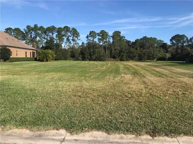 15418 Mulholland Road, Parrish, FL 34219 (MLS #A4455147) :: Armel Real Estate
