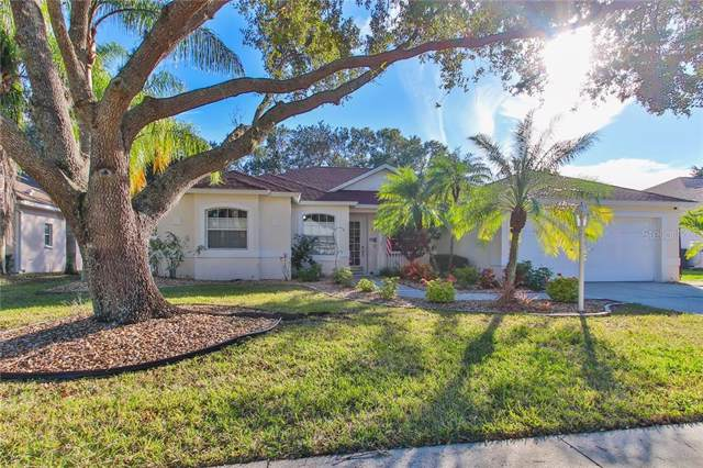 11308 Pine Lilly Place, Lakewood Ranch, FL 34202 (MLS #A4455418) :: Baird Realty Group