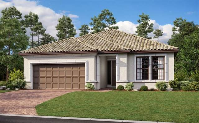 20125 Umbria Hill Road, Tampa, FL 33647 (MLS #A4456574) :: Cartwright Realty