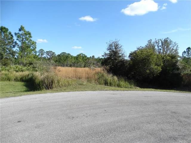 1115 416TH Court E, Myakka City, FL 34251 (MLS #A4456683) :: Team Bohannon Keller Williams, Tampa Properties