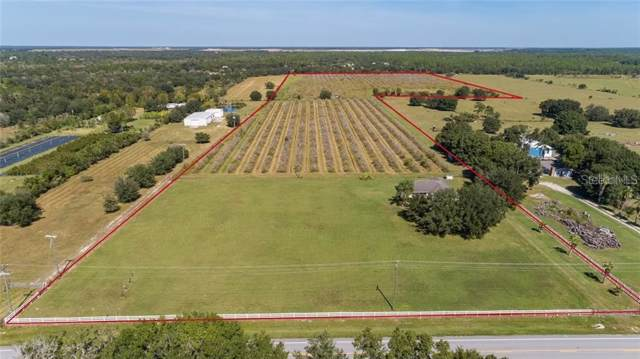 41555 State Road 64 E, Myakka City, FL 34251 (MLS #A4456737) :: Griffin Group