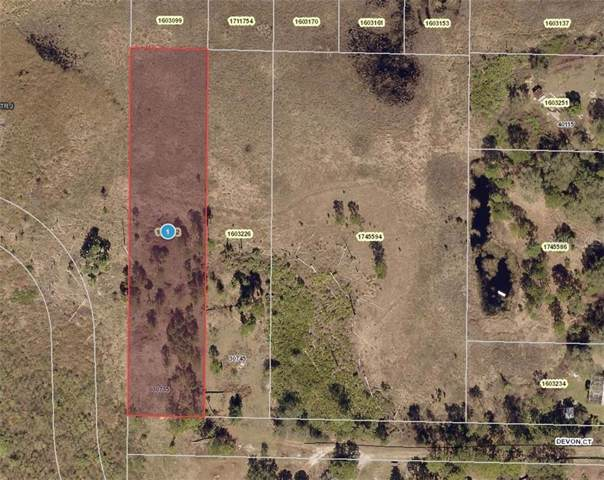30735 Devon Court, Eustis, FL 32736 (MLS #A4456776) :: Team Pepka