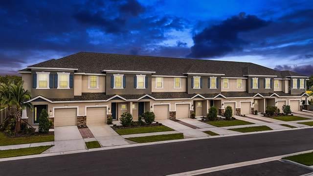 26403 Limestone Springs Way 07-048, Wesley Chapel, FL 33544 (MLS #A4456777) :: Team Pepka