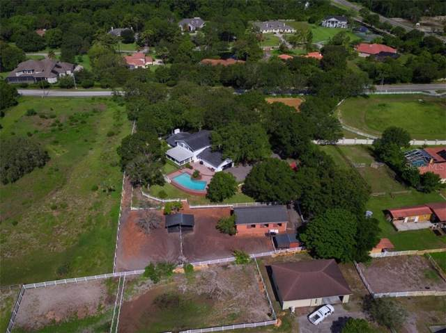 101 Old East Lake Road, Tarpon Springs, FL 34688 (MLS #A4457767) :: Griffin Group