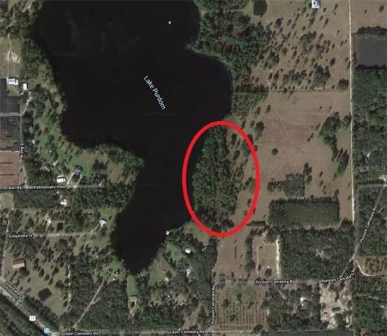 248 Purdom Cemetery Road, Pierson, FL 32180 (MLS #A4458693) :: The Duncan Duo Team