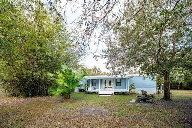 6331 SW Shores Avenue, Arcadia, FL 34266 (MLS #A4459063) :: Rabell Realty Group