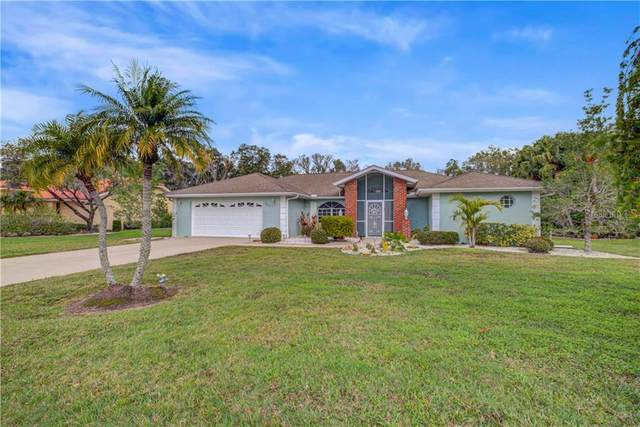 3633 Wilderness Boulevard W, Parrish, FL 34219 (MLS #A4459673) :: Burwell Real Estate