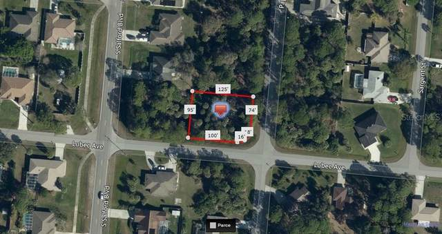 Papillon Street, North Port, FL 34287 (MLS #A4459689) :: EXIT King Realty