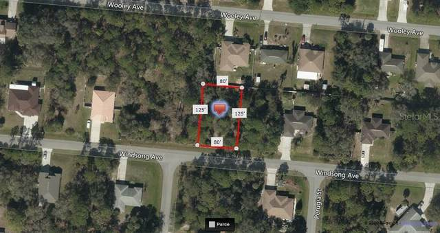 Windsong Avenue, North Port, FL 34287 (MLS #A4459693) :: Homepride Realty Services