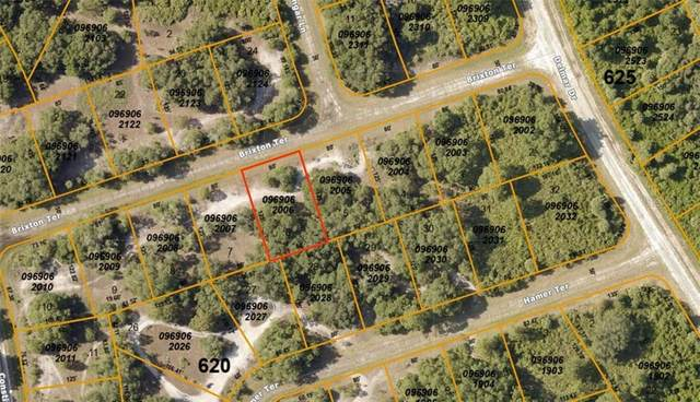 Brixton Terrace, North Port, FL 34291 (MLS #A4459839) :: Griffin Group