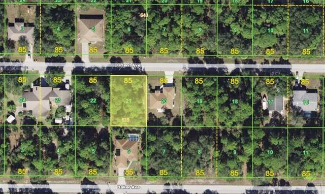 17113 Orient Avenue, Port Charlotte, FL 33948 (MLS #A4460832) :: Baird Realty Group