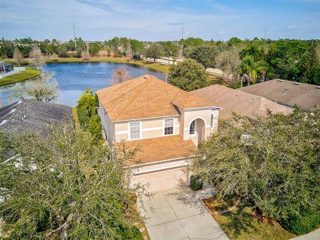 15331 Skip Jack Loop, Lakewood Ranch, FL 34202 (MLS #A4461169) :: Icon Premium Realty