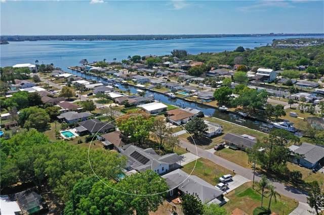 812 Camellia Avenue, Ellenton, FL 34222 (MLS #A4462848) :: Medway Realty