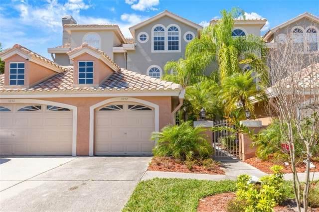 1652 Arabian Lane, Palm Harbor, FL 34685 (MLS #A4462894) :: Delgado Home Team at Keller Williams