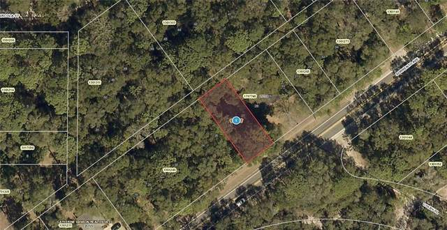 25731 State Road 46, Mount Plymouth, FL 32776 (MLS #A4463982) :: Premier Home Experts