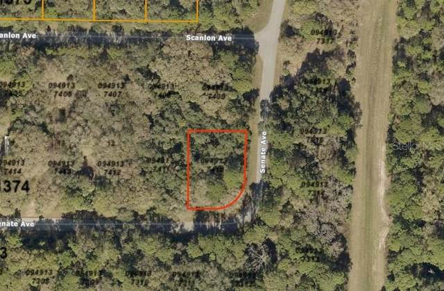 Senate Avenue, North Port, FL 34291 (MLS #A4464053) :: Medway Realty