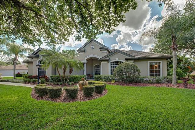 6804 Areca Boulevard, Sarasota, FL 34241 (MLS #A4464127) :: Homepride Realty Services