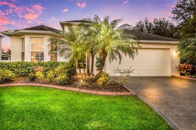 7006 56TH Terrace E, Palmetto, FL 34221 (MLS #A4464309) :: Armel Real Estate