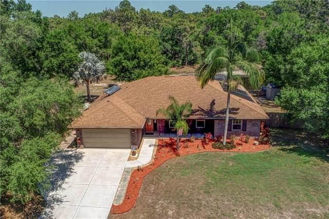 1127 133RD Street E, Bradenton, FL 34212 (MLS #A4464640) :: Your Florida House Team