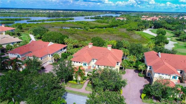 927 River Basin Court #202, Bradenton, FL 34212 (MLS #A4464641) :: Remax Alliance