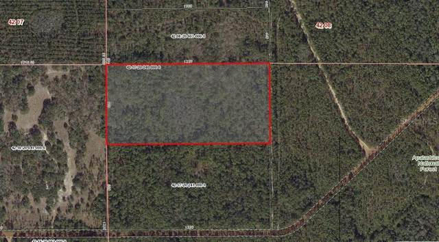 101 Backwoods Jackson Bluff Road, Tallahassee, FL 32310 (MLS #A4464801) :: Bustamante Real Estate