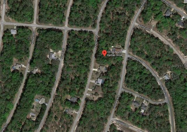 10731 N Haitian Drive, Citrus Springs, FL 34434 (MLS #A4465457) :: Zarghami Group