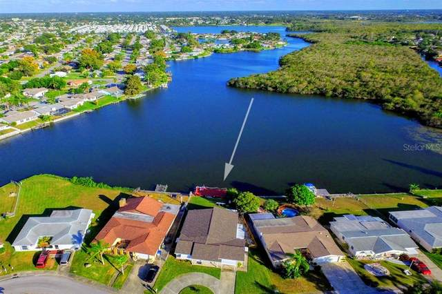 2022 Norfolk Drive, Holiday, FL 34691 (MLS #A4465599) :: Griffin Group