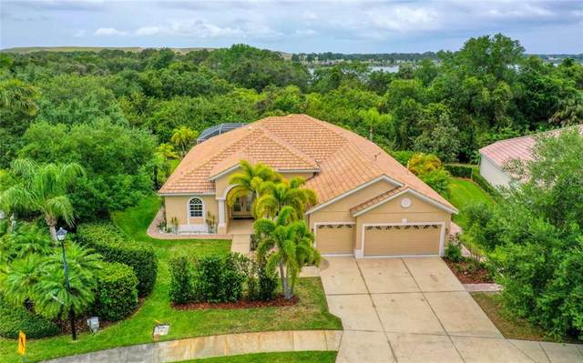 6196 Palomino Circle, University Park, FL 34201 (MLS #A4465646) :: McConnell and Associates
