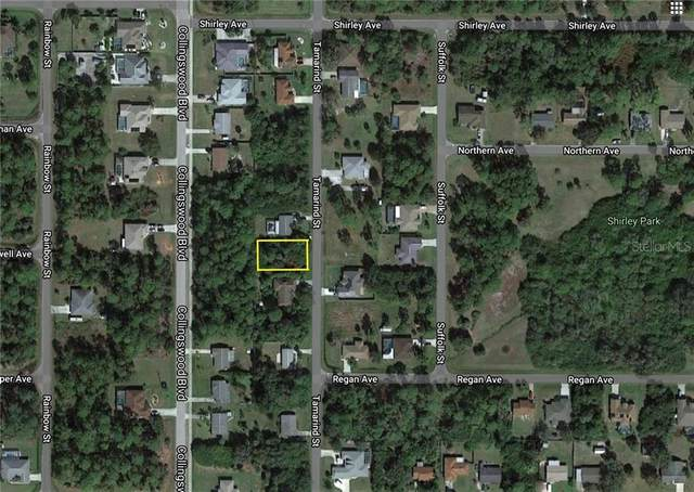 2467 Tamarind Street, Port Charlotte, FL 33948 (MLS #A4466712) :: The Light Team