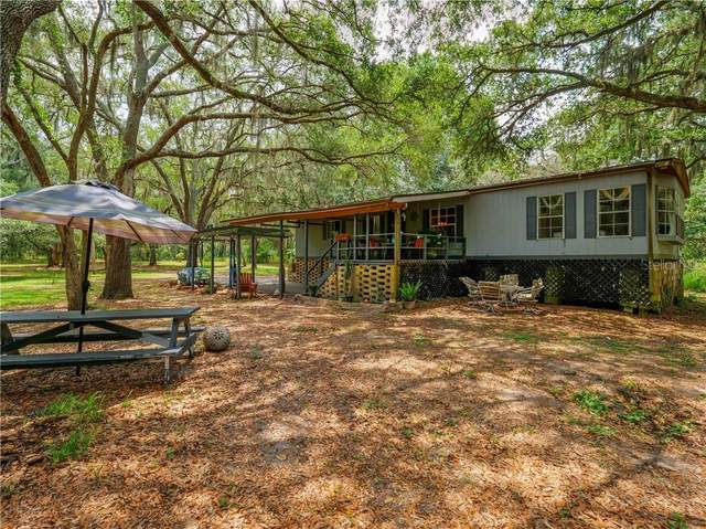 12121 Fred Drive, Riverview, FL 33578 (MLS #A4466772) :: Keller Williams Realty Peace River Partners