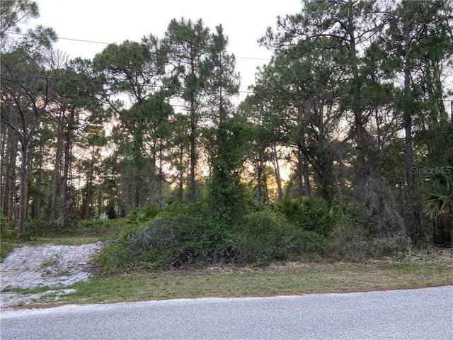 Tally Ho Road, North Port, FL 34291 (MLS #A4467308) :: Bustamante Real Estate