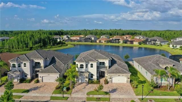 2568 Oakwood Preserve Drive, Wesley Chapel, FL 33543 (MLS #A4467543) :: Cartwright Realty