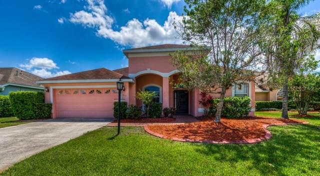 515 Pecan Lane, Bradenton, FL 34212 (MLS #A4467710) :: Griffin Group