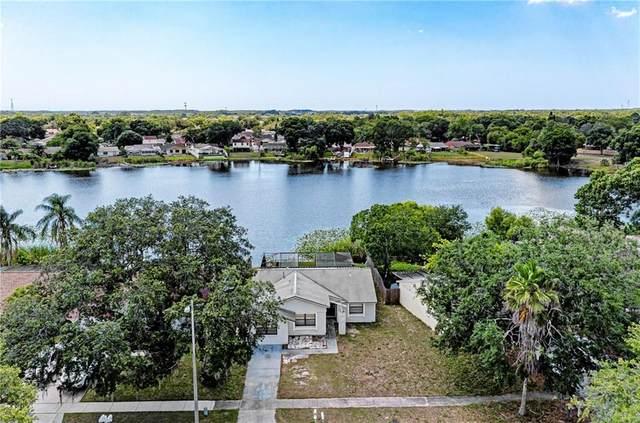 12416 Queensland Lane, Tampa, FL 33625 (MLS #A4468126) :: Team Bohannon Keller Williams, Tampa Properties