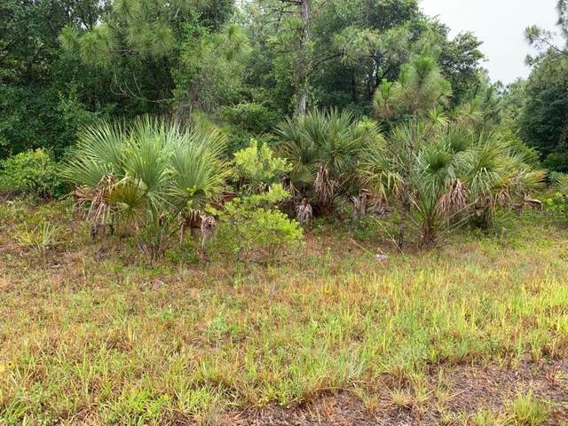 Ironside Street Lot 12, North Port, FL 34288 (MLS #A4468417) :: The Duncan Duo Team