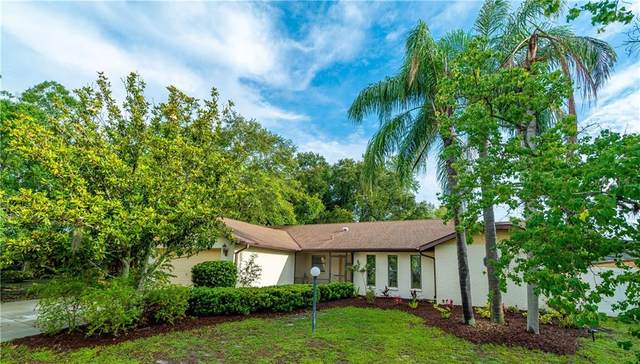 2049 Country Meadows Lane, Sarasota, FL 34235 (MLS #A4468700) :: Team Pepka