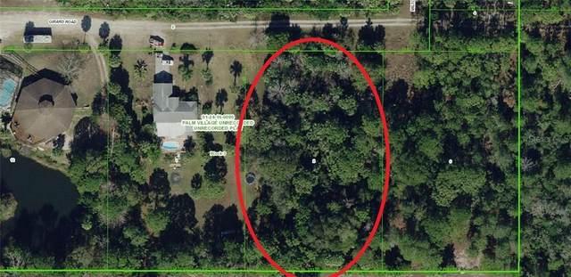 101 Girard Drive, Hudson, FL 34667 (MLS #A4468953) :: Pepine Realty