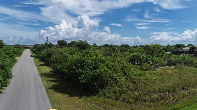 9378 Bluegill Circle, Port Charlotte, FL 33981 (MLS #A4468991) :: Charles Rutenberg Realty