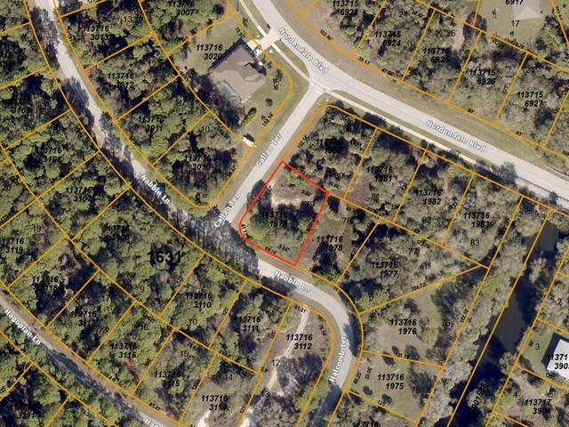 Nabble Lane, North Port, FL 34288 (MLS #A4469179) :: Young Real Estate