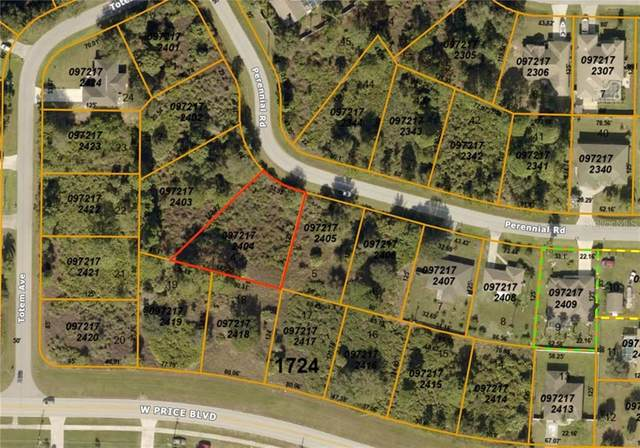 0972172404 Perennial Road, North Port, FL 34291 (MLS #A4469238) :: Griffin Group