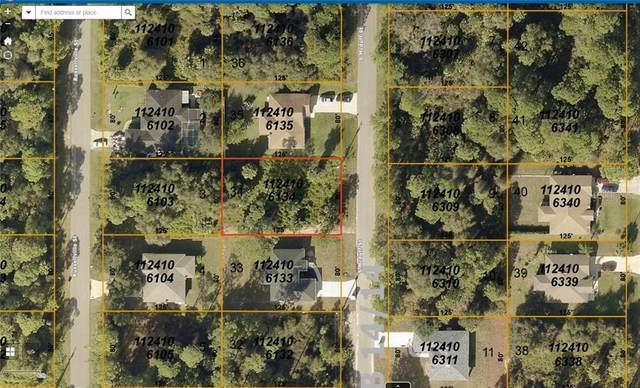 S Mcduff Street, North Port, FL 34288 (MLS #A4469884) :: Team Bohannon Keller Williams, Tampa Properties