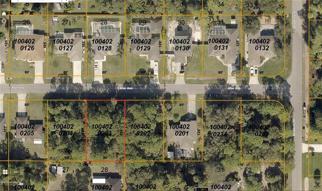 Afar Avenue, North Port, FL 34286 (MLS #A4469938) :: Griffin Group