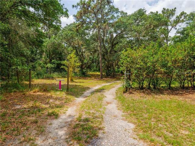 12121 Fred Drive, Riverview, FL 33578 (MLS #A4470231) :: Sarasota Property Group at NextHome Excellence