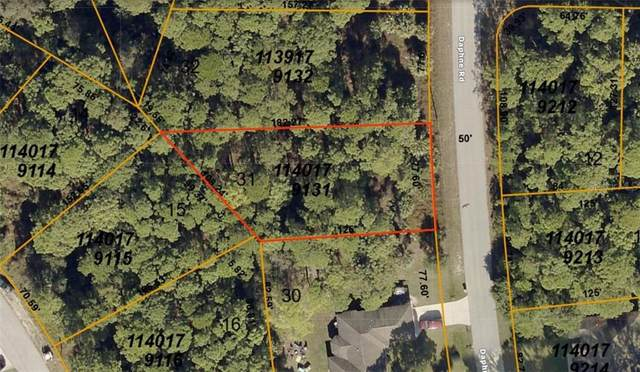 1140179131 Daphne Road, North Port, FL 34288 (MLS #A4470421) :: Team Bohannon Keller Williams, Tampa Properties