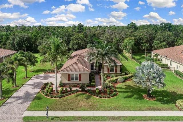 17108 4TH Avenue E, Bradenton, FL 34212 (MLS #A4470581) :: Florida Real Estate Sellers at Keller Williams Realty