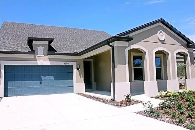 8356 Olive Brook Drive, Wesley Chapel, FL 33545 (MLS #A4470754) :: Frankenstein Home Team