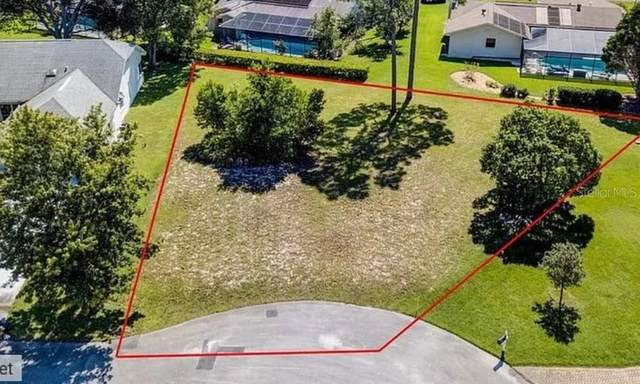 7424 Leith Court, Weeki Wachee, FL 34613 (MLS #A4470928) :: Griffin Group