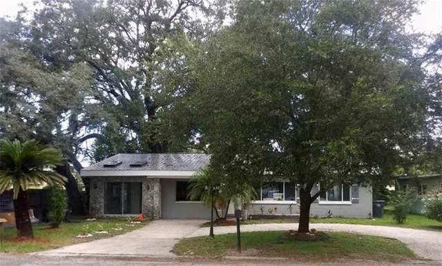 2817 W Robson Street, Tampa, FL 33614 (MLS #A4471040) :: Team Bohannon Keller Williams, Tampa Properties