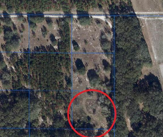 13210 SW County Road 346, Archer, FL 32618 (MLS #A4471057) :: Griffin Group